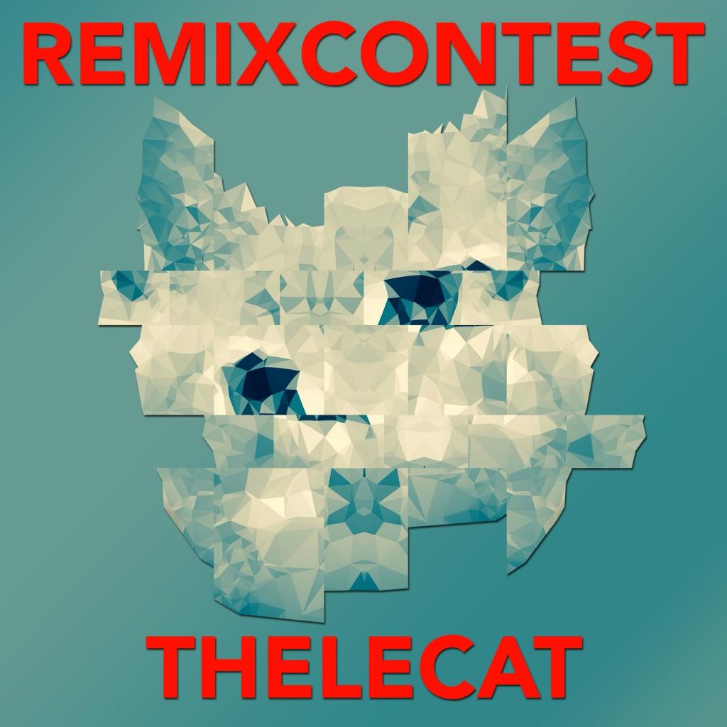 Remix Contest Thelecat