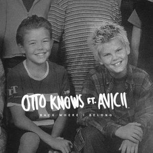 Remix Contest; Otto Knows ft Avicii