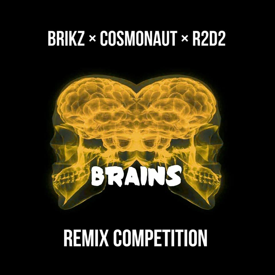 Brains Remix Competition