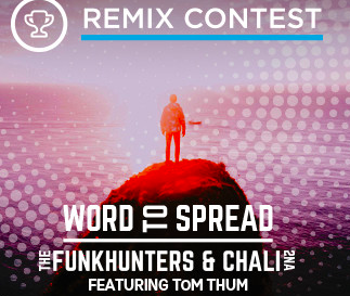 Remix The Funk Hunters