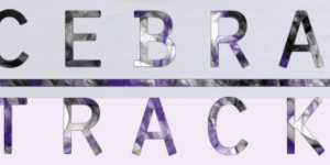 Cebratrack Remix Competition