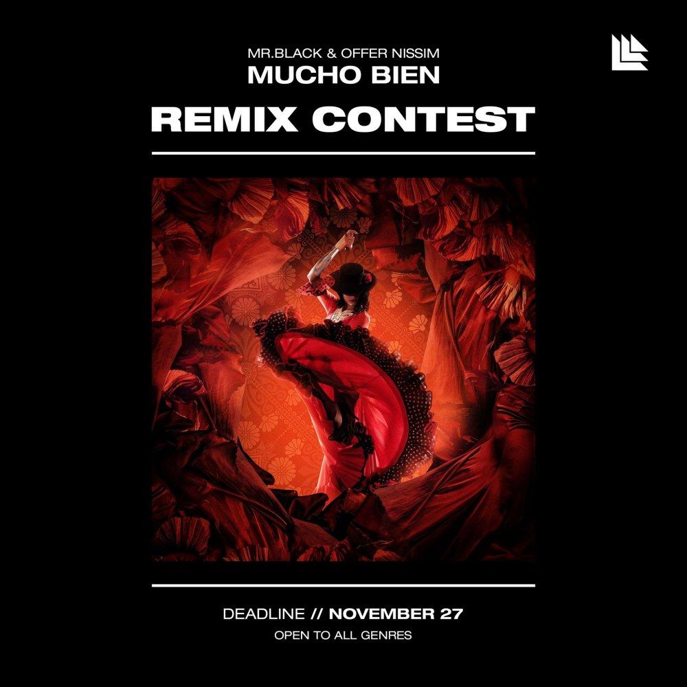 Remix MR.BLACK & Offer Nissim - Mucho Bien